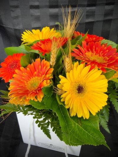 Vintage bloom Tokoroa florist gerberas bouquet in a bag